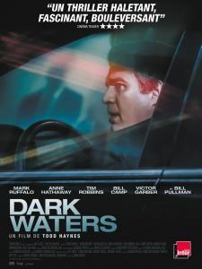 Dark Waters 2019 MULTi 1080p BluRay x264-UKDHD