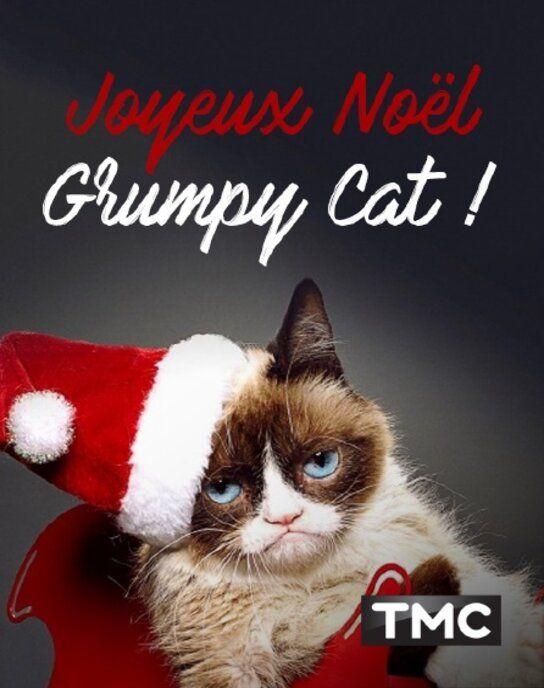 [TMC HD] Joyeux Noël Grumpy Cat ! 2014 VFF WEB_DL 720p AVC-NoBodyPerfect