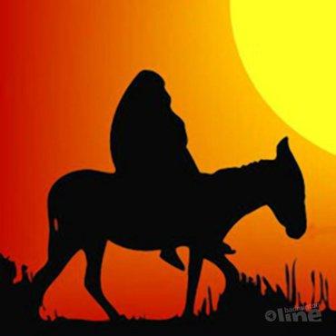 Mijn koninkrijk voor een... ezel!