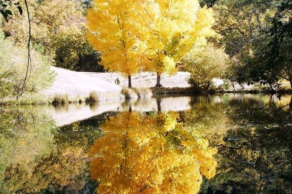 Een stukje reflectie - sxc.hu