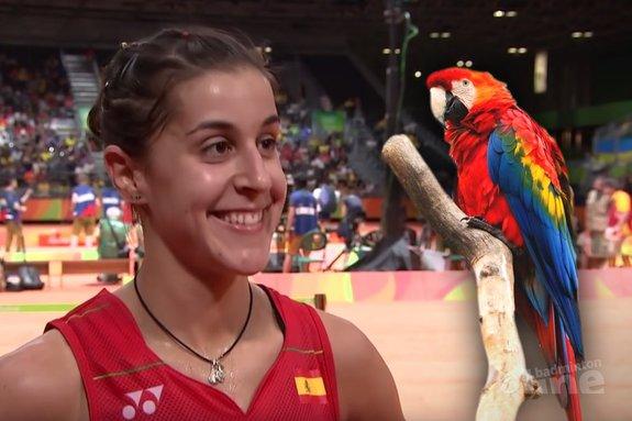 Denmark Open 2016: Carolina Marin schreeuwt als een schorre papegaai - YouTube / Pixabay