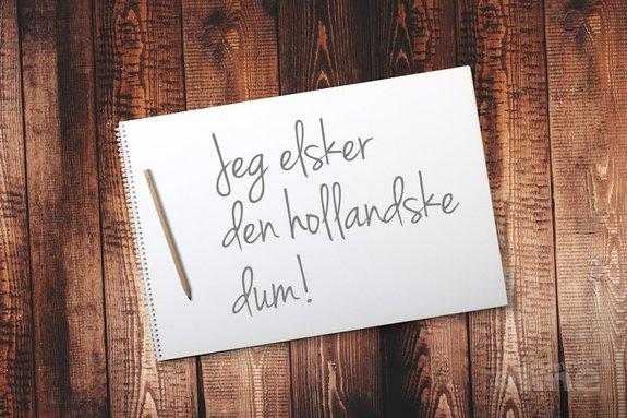 De dubbele agenda van technisch directeur Claus Poulsen: voorkeur voor Deense landgenoten - Pixabay