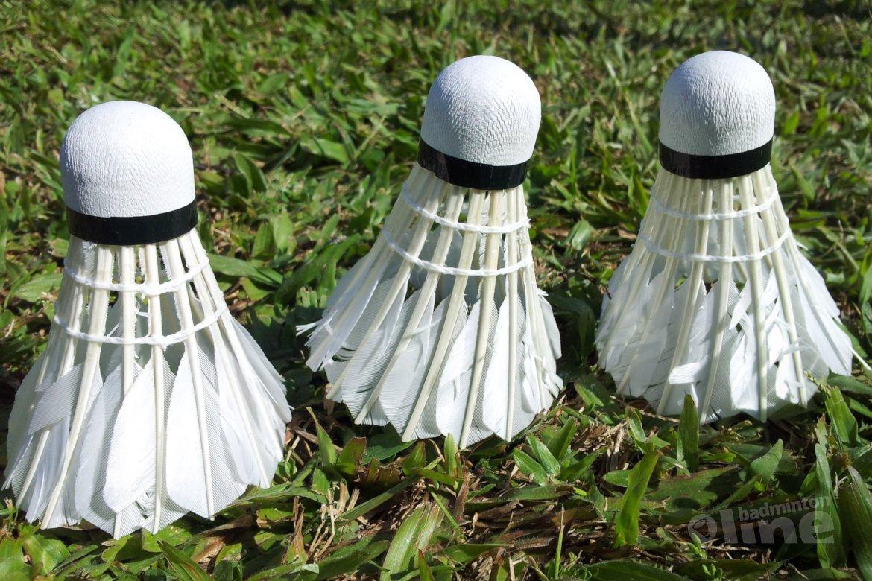 Moet het Junior Master Circuit van Badminton Nederland op de schop?
