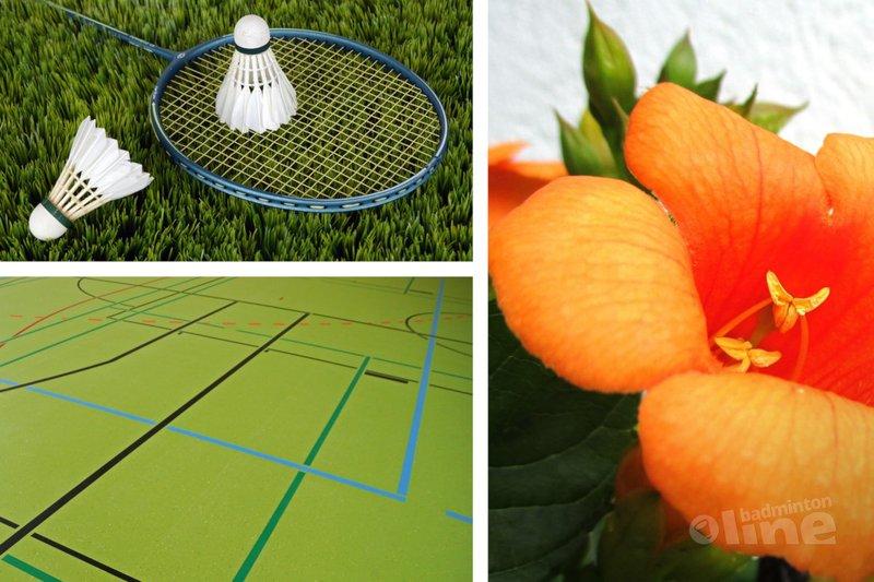 Wat doe jij deze zomer? Zomerbadminton of juist lekker buiten sporten? - Pixabay