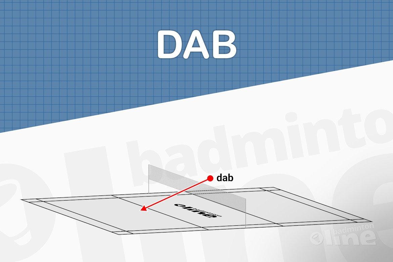 Wat is een dab?