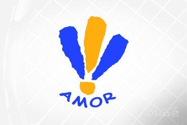 AMOR begint aan derde seizoen in Nederlandse Badminton Eredivisie