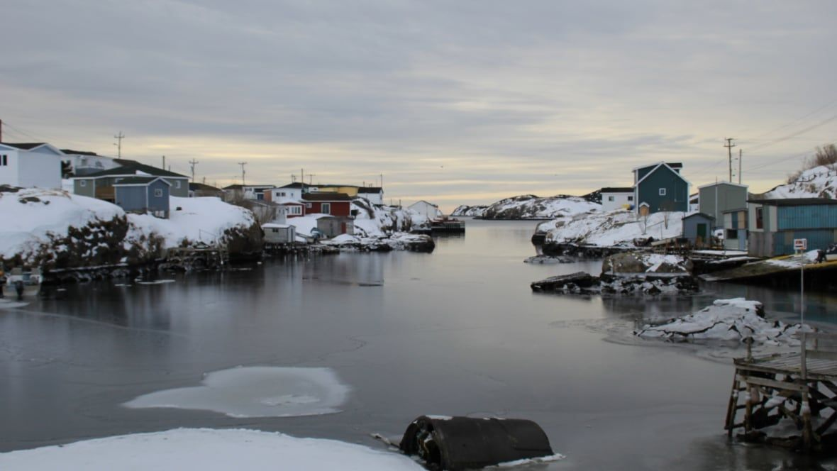 Hunting, fishing, gas and ferries: Fees and fines add up for rural Newfoundland and Labrador