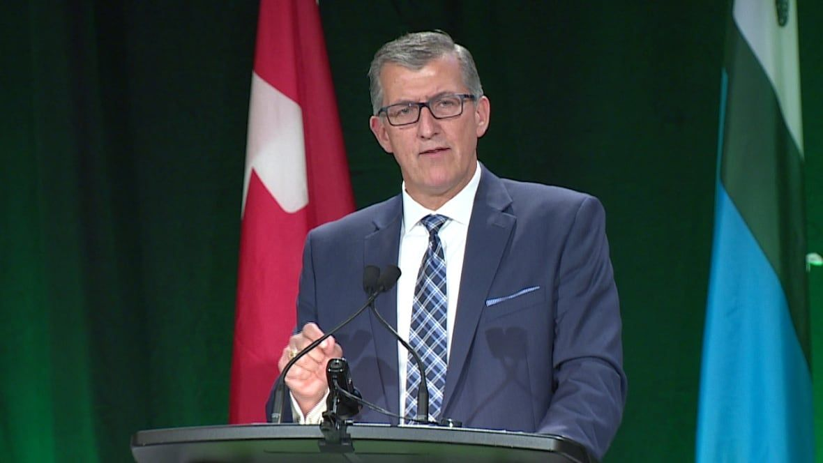 Expect axe to fall under a Liberal government, Paul Davis warns NAPE