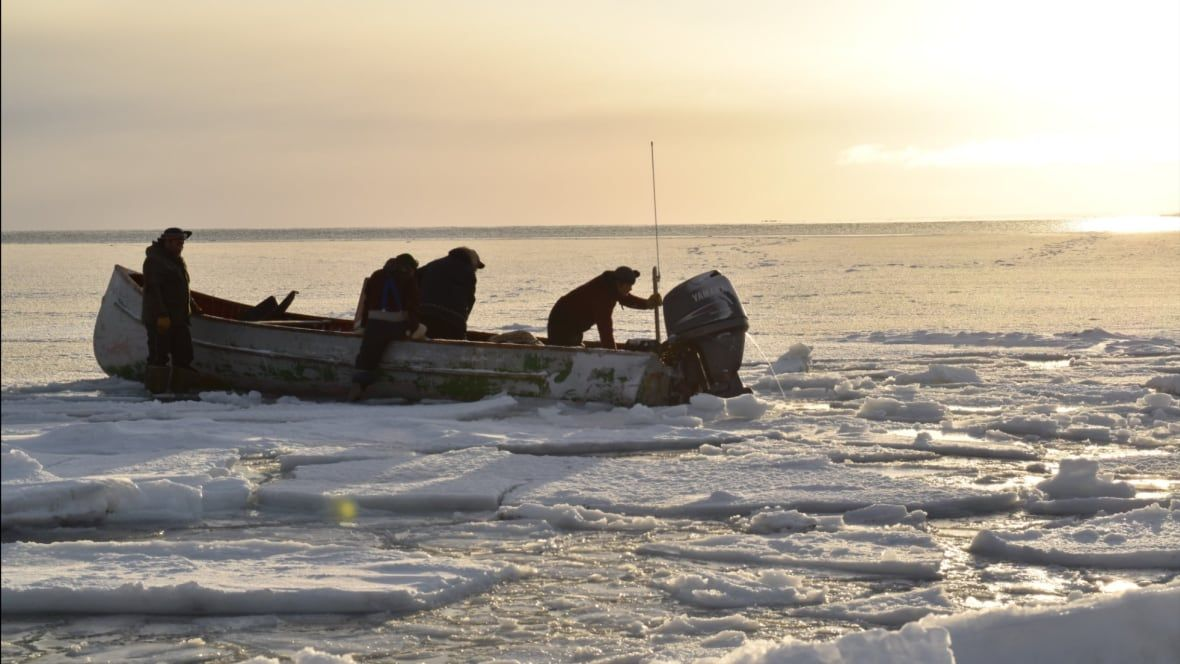Mysterious 'ping' sound from sea floor baffles Arctic community