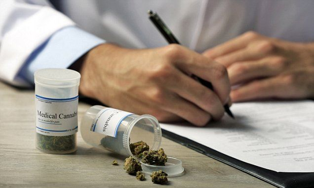 Young cancer patient killed by 'contaminated' medical marijuana
