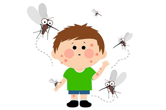 蚊叮蟲咬 - 敏感? 蟲咬皮炎? 蜂窩性組織炎?