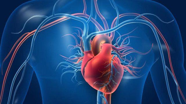 [Image: posisi-jantung-dan-nyeri-yang-bisa-terja...248392.jpg]