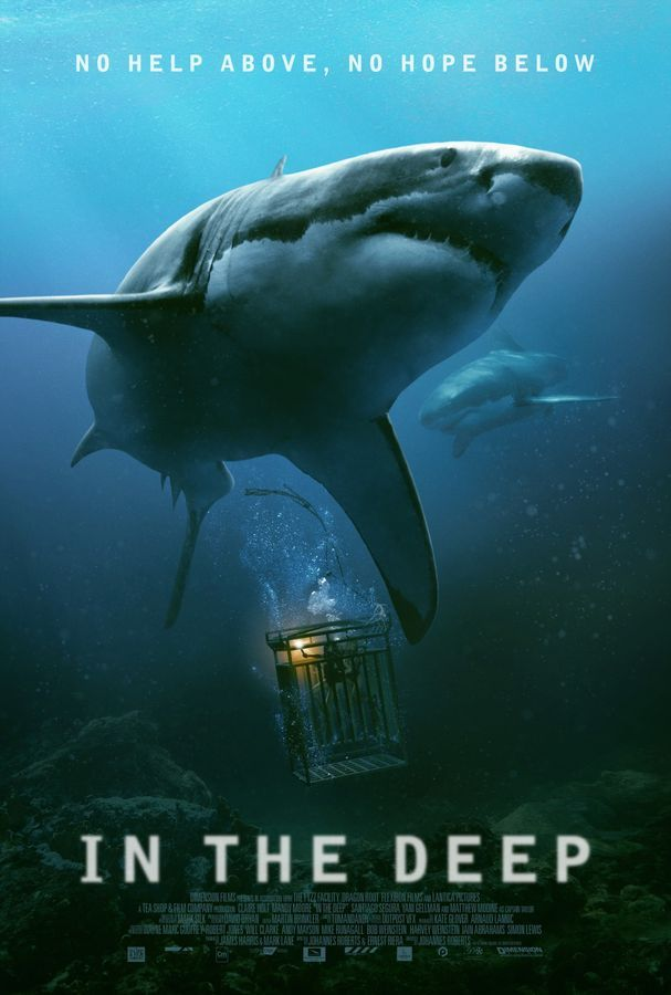 In the Deep / 47 Meters Down (2016) PLSUBBED.480p.WEB-DL.XviD.AC3-LPT / POLSKIE NAPISY