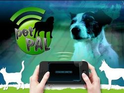app-per-iphone-controlla-il-tuo-animale-domestico