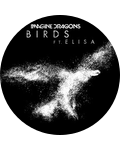Imagine Dragons - Birds (Audio) ft. Elisa