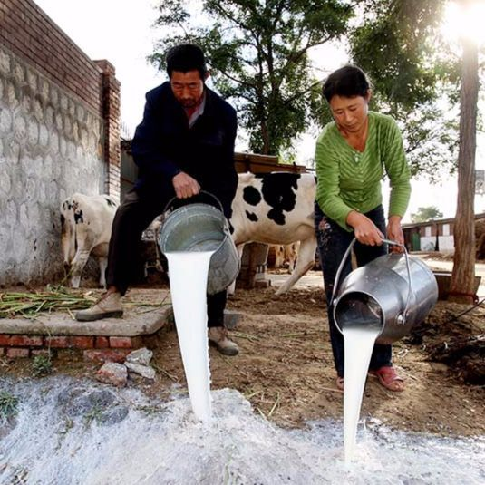 Spilled Milk: How the Melamine Scandal Impacted China