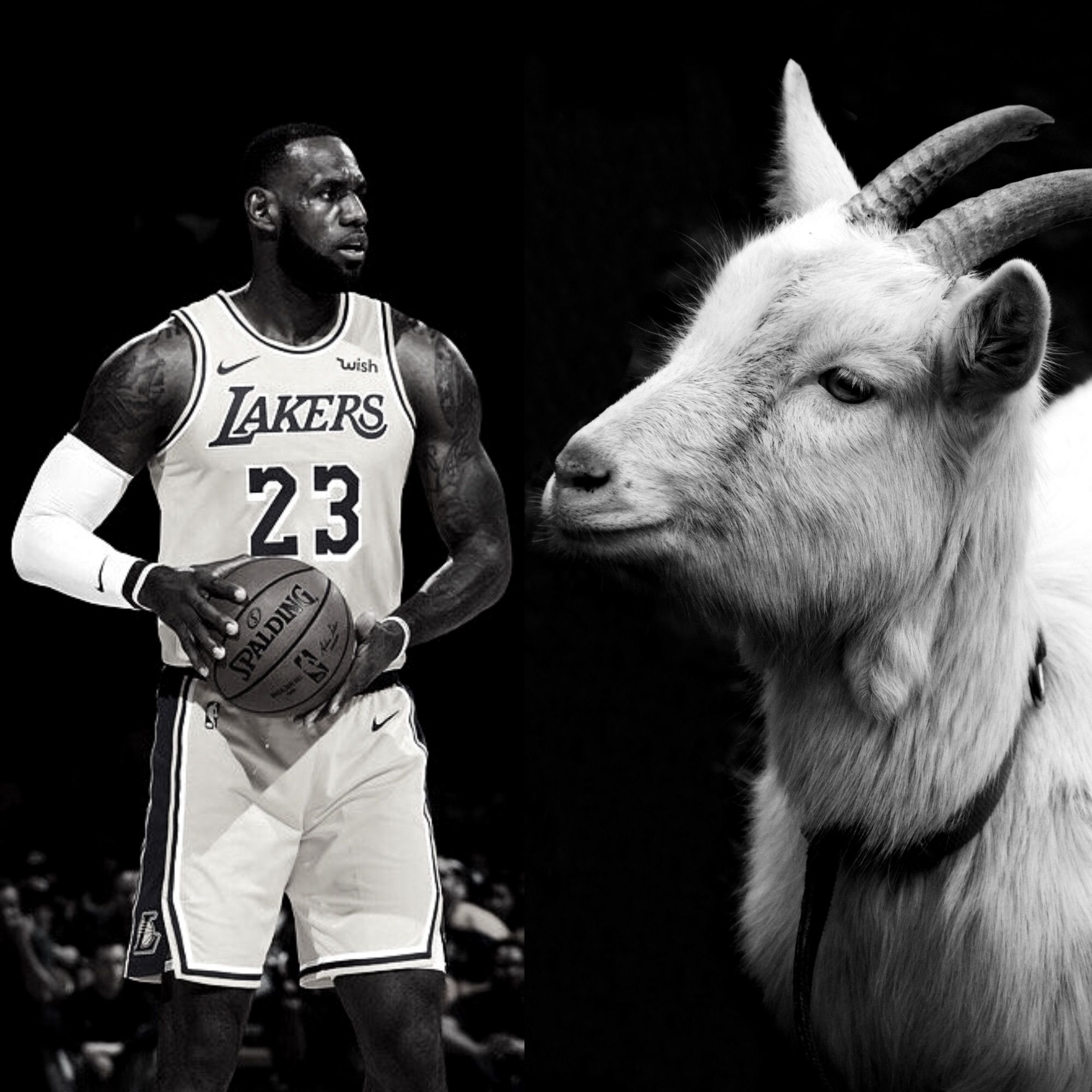LeBron James is the GOAT and it's NOT EVEN CLOSE