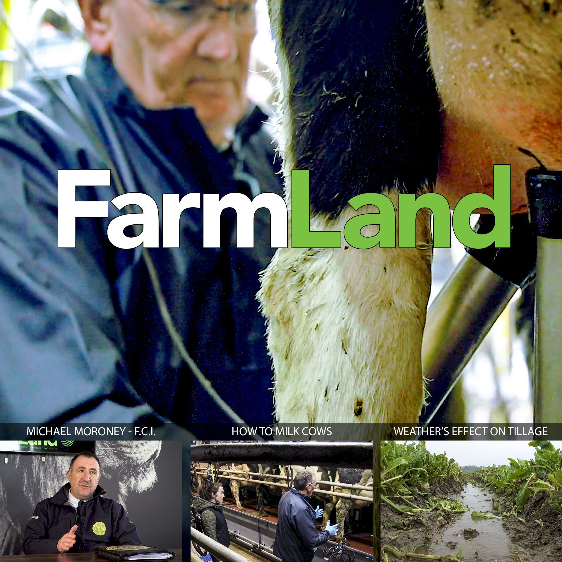 FarmLand: 27th Feb 2020
