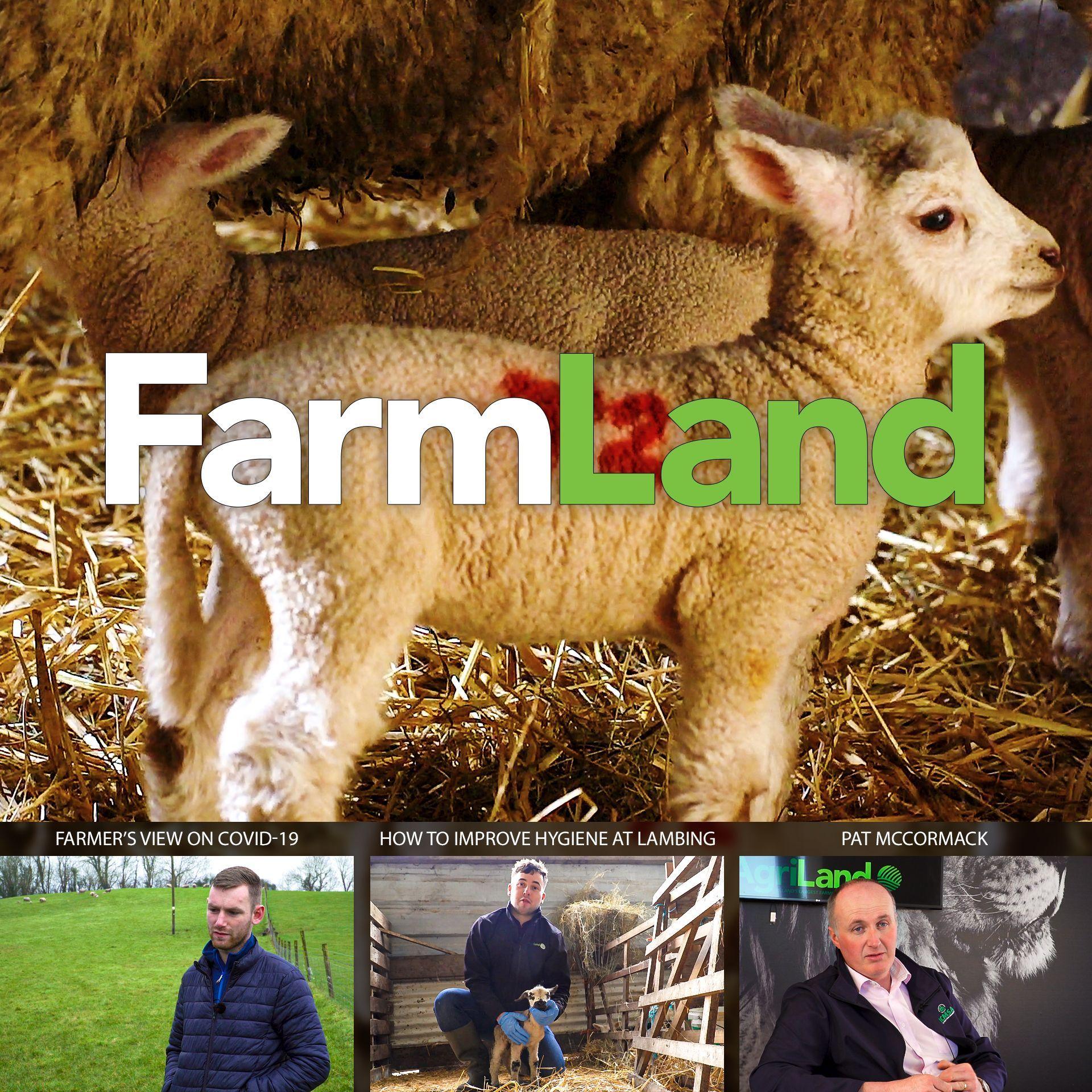 FarmLand: 26th March 2020