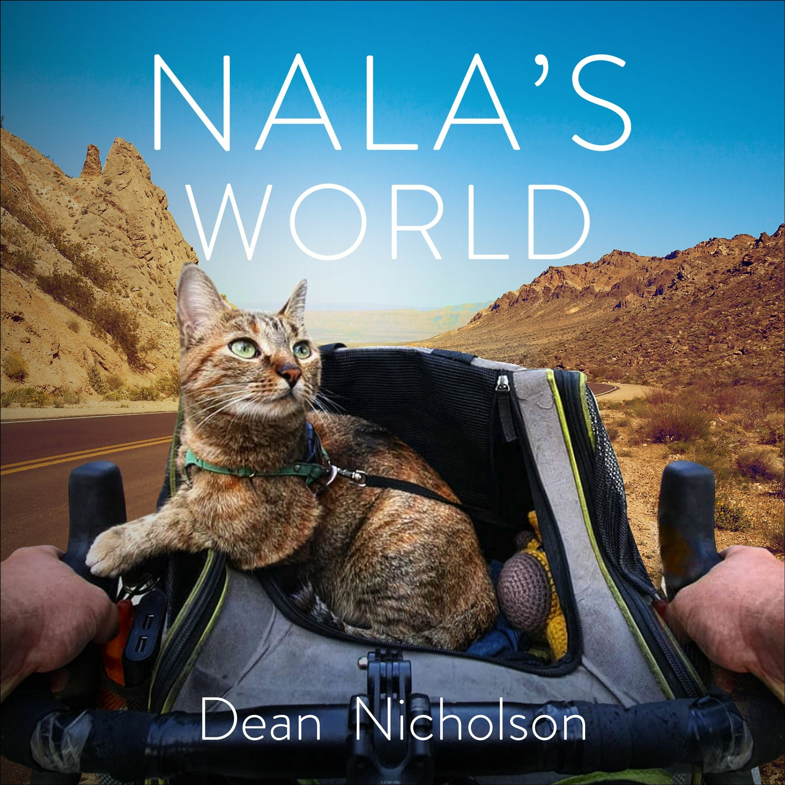 NALA'S WORLD by Dean Nicholson, read by Angus King - Audiobook extract