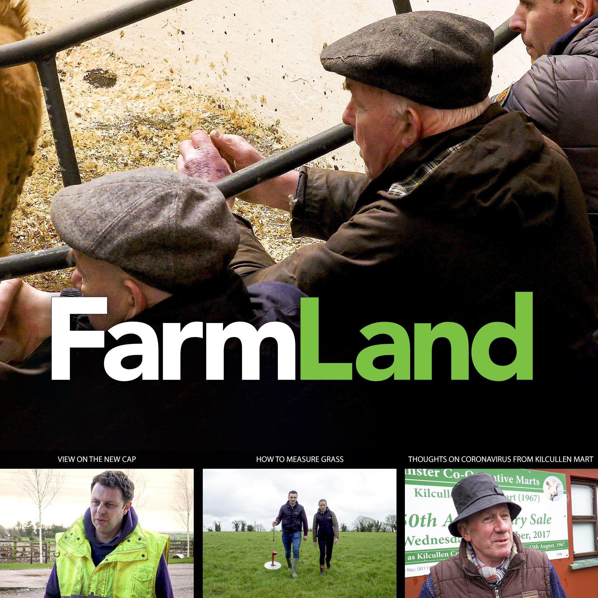 FarmLand: 12th March 2020
