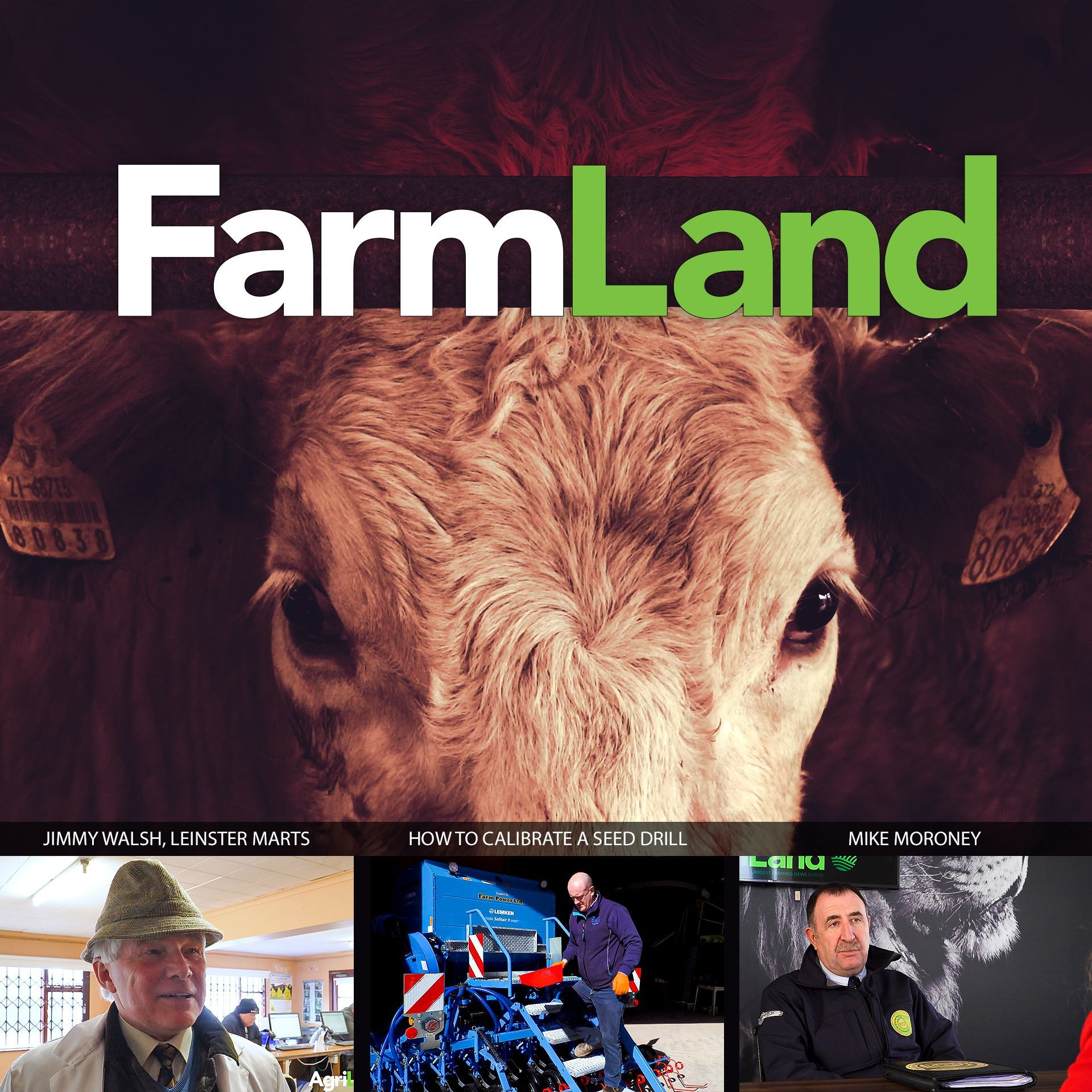 FarmLand: 19th March 2020