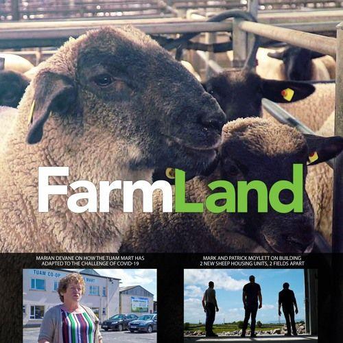 FarmLand: 28th May 2020
