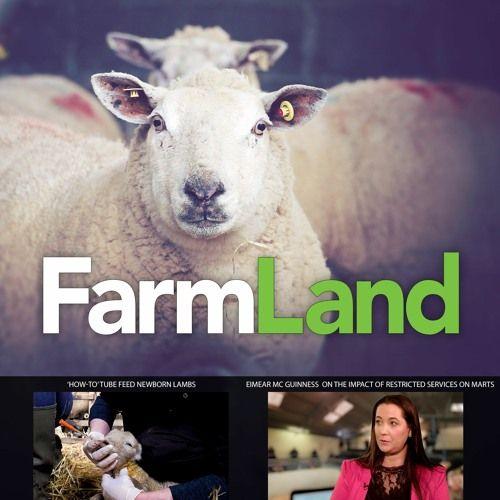 FarmLand: 2nd April 2020