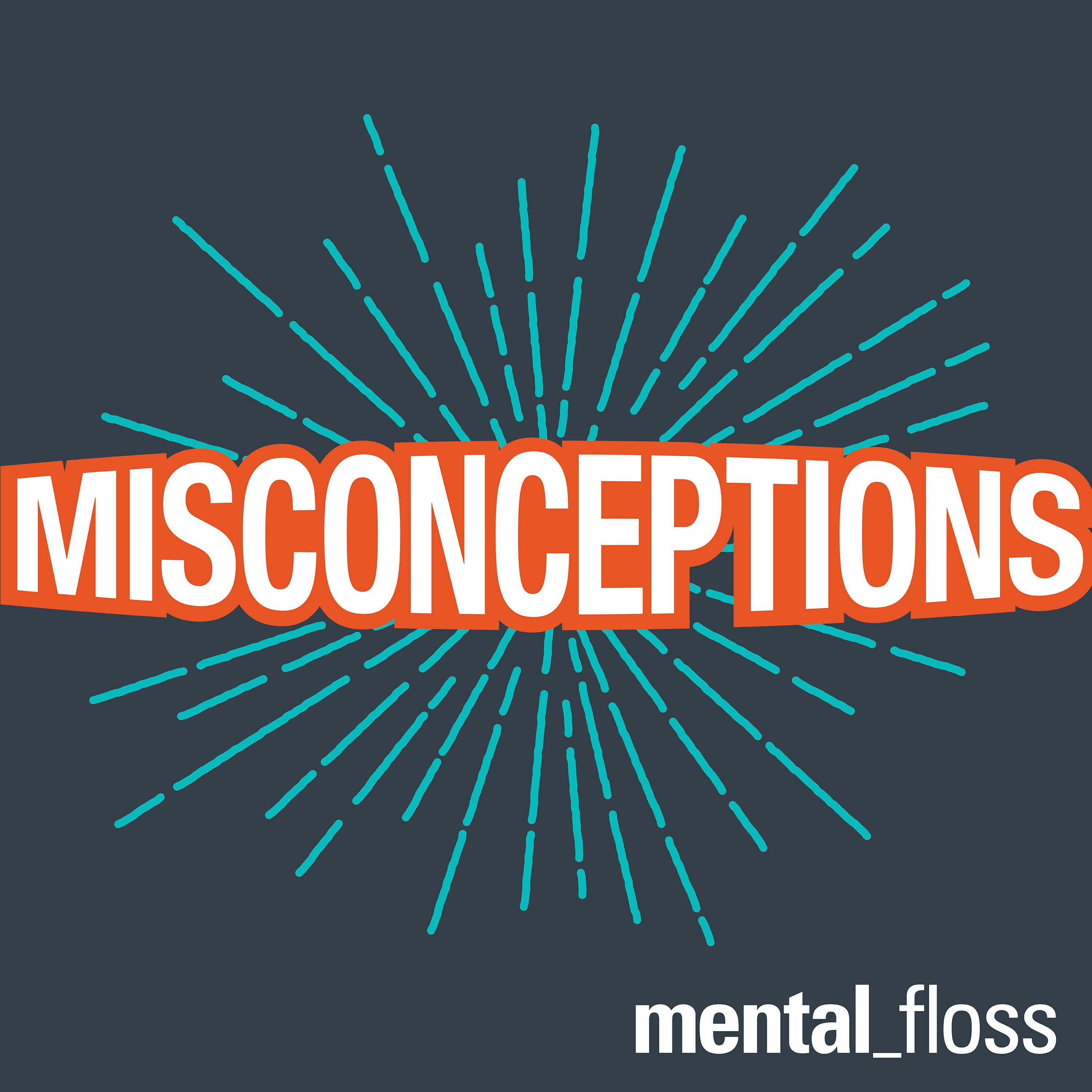 Misconceptions Episode 1: The Internet