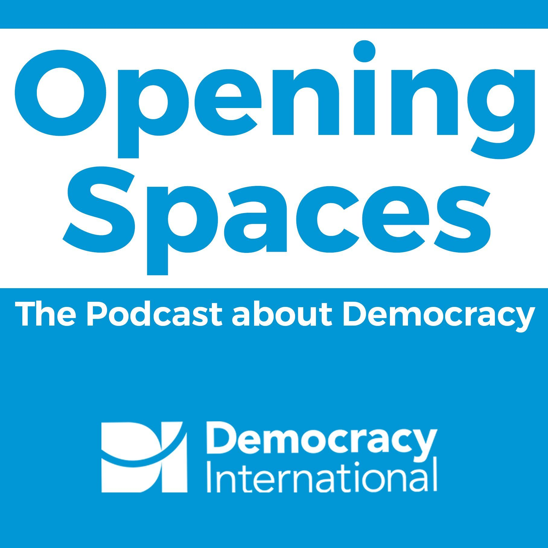 Opening Spaces, Season 1, Episode 4: Why Monitor Elections?