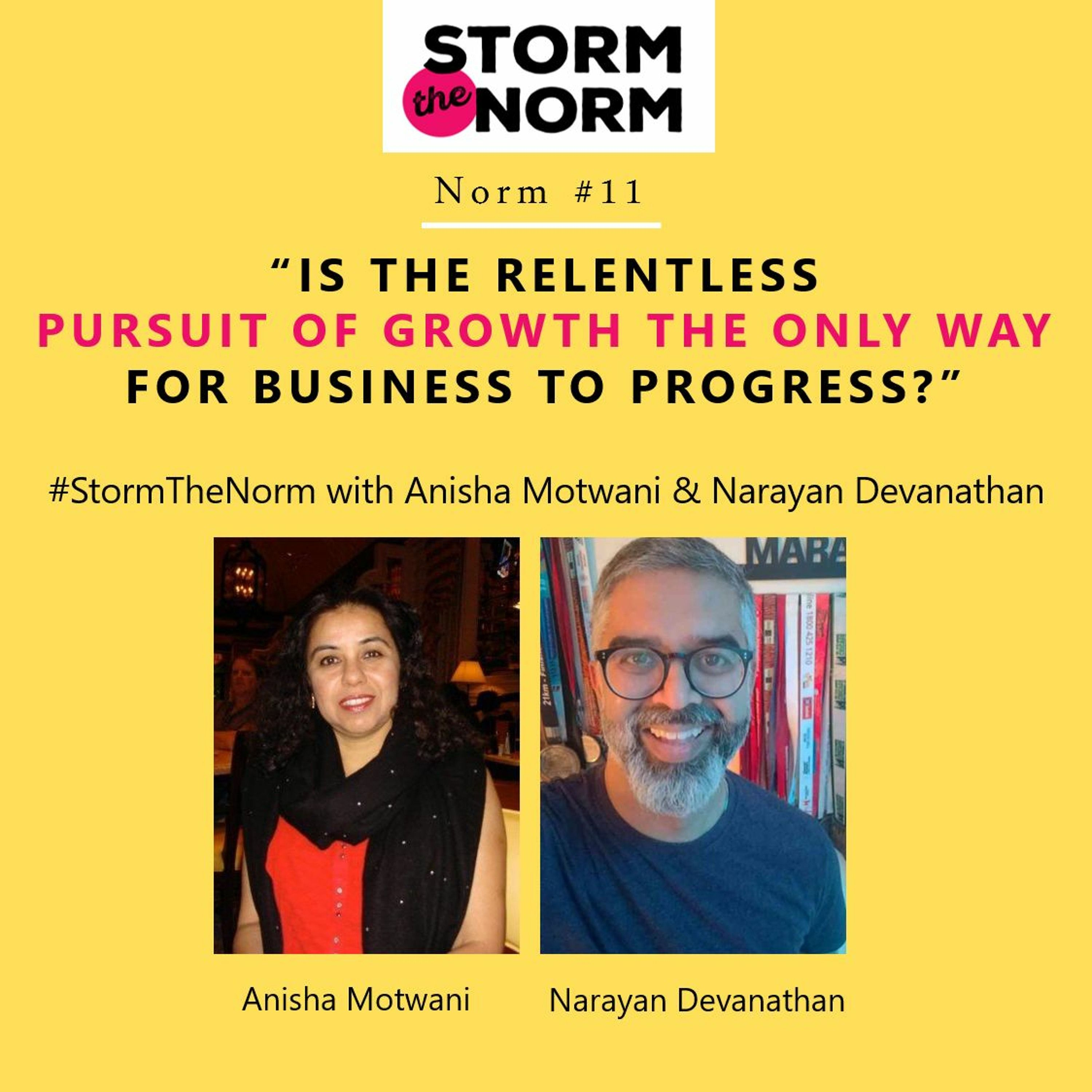 STN EP 11: Can businesses be planned for DE-GROWTH?