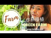 [FARM] 水耕種植樂與怒 Green Farm