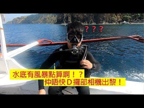 香港以外最方便,海洋生物物種最豐富既潛水聖地!