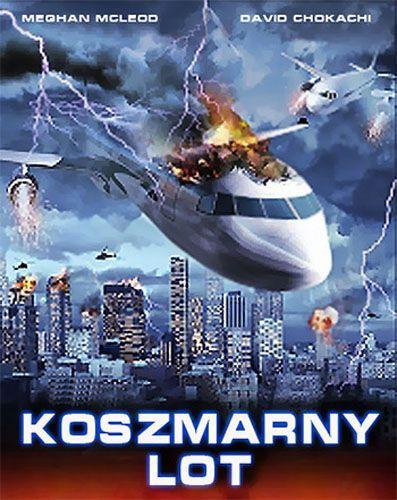Koszmarny lot / Collision Course (2012) PL.PDTV.XviD-Zet / Lektor PL