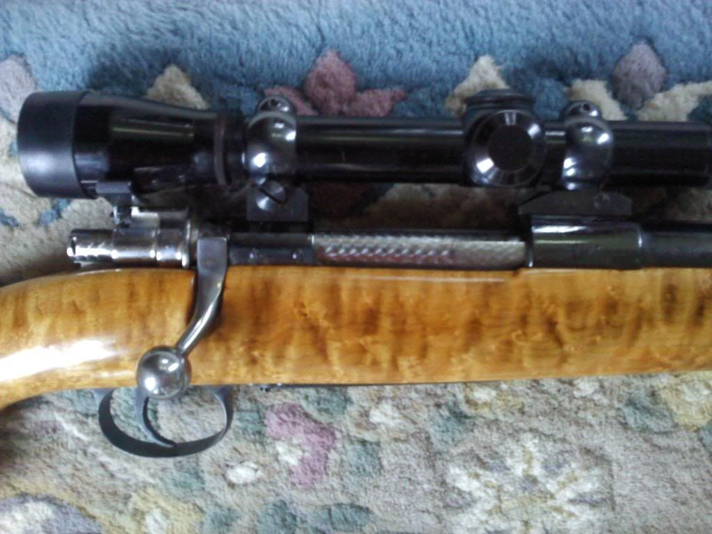 [Image: Rifle_C_zps96048f5d.jpg]