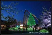 [日本] Day 2.3 冬季限定點燈夜祭 X 夜櫻 X 遊樂場 - 讀賣樂園/遊園地...