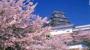 CNN 選出 31 個最美麗日本景點,你最喜歡哪一個呢?