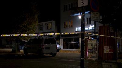 Петима загинали при нападение с лък в Норвегия (обновена)
