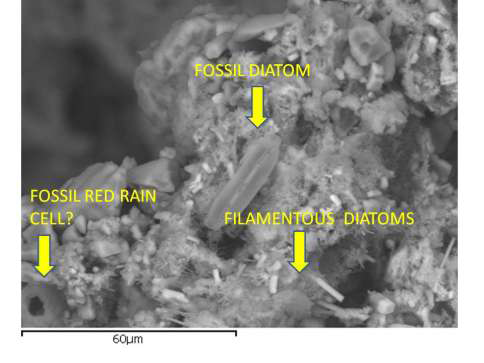 [Image: Polonnaruwa-meteorite-2_zps5f5edf84.png]