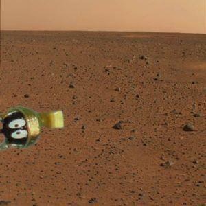 [Image: MartianPicture.jpg]