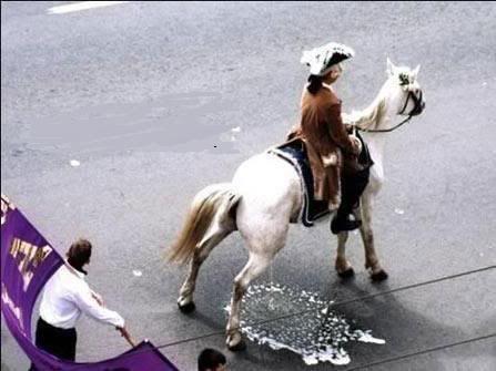 [Image: 010809_horse_piss_parade-1.jpg]
