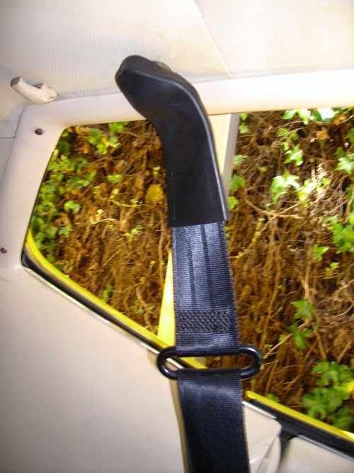 [Image: seatbelt11.jpg]