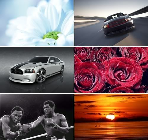 The Best Mixed Wallpapers Pack 195