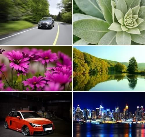 The Best Mixed Wallpapers Pack 229