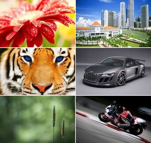 The Best Mixed Wallpapers Pack 273