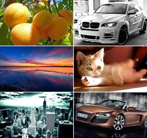 The Best Mixed Wallpapers Pack 313