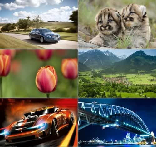 The Best Mixed Wallpapers Pack 317
