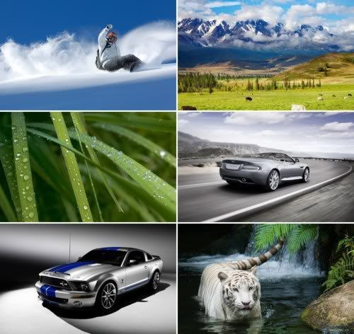 The Best Mixed Wallpapers Pack 319
