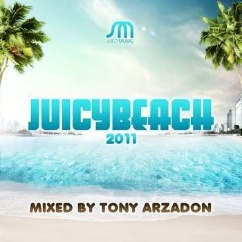 VA - Juicy Beach 2011