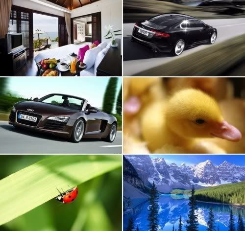 The Best Mixed Wallpapers Pack 333